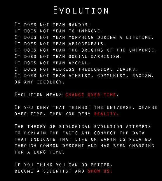 evolution is