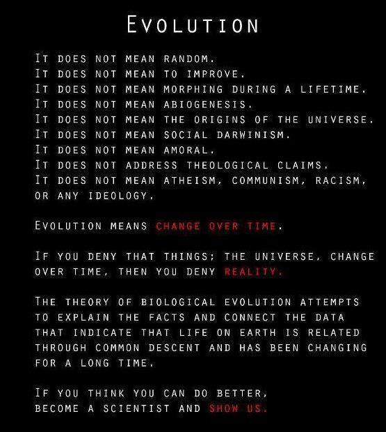 evolution is